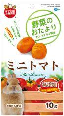 野菜のおたより ミニトマト 10g